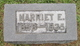 Harriet E <I>Mahaffey</I> Ellis