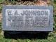 William Anderson Johnson