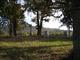 Looney Cemetery