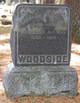 Profile photo:  Abraham Woodside