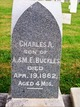 Profile photo:  Charles A. Buckles