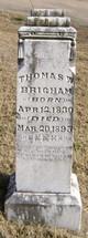 Profile photo:  Thomas W. Brigham