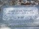 "James Lewis ""Bobo"" Vinyard"