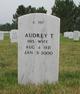 Audrey T Massey