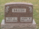 John William Brush