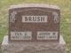 Iva Zuay <I>Brookhart</I> Brush