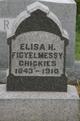 Eliza J. <I>Haldeman</I> Figyelmessy