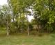 Barnhill-Muddiman Cemetery