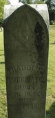 Thaddeus Arthur Hardgraves