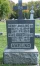 Henry Herman Ameling, Sr