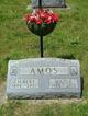 Maple Amos