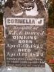 Cornelia J Dinkins