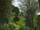 Ardcavan Graveyard