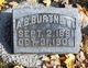 Profile photo:  A. B. Burtnett