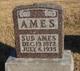 Sub Ames
