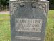Mary E Long