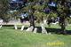 Draketown  Cemetery