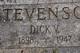 """Richard Van Horn """"Dick"""" Stevenson"""