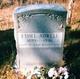 Profile photo:  Ethel <I>Toohey</I> Adwell