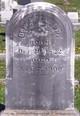 Dr William A. Clapp