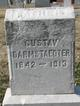 Profile photo:  Gustav Darmstaedter