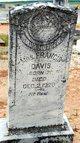 """Profile photo:  Frances F. """"Fanny"""" <I>English</I> Davis"""