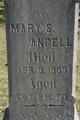 Mary Sarepta <I>Farmer</I> Angell