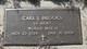 Carl L Brooks