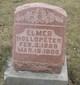 Elmer Jacob Hollopeter