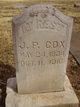 "Abram Jefferson Pryor ""J. P."" Cox"