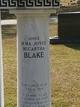 Irma Joyce <I>McCartha</I> Blake