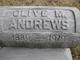 Olive J <I>Metherd</I> Andrews