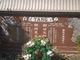 Wai Ching Lam Tang