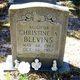 Profile photo:  Christine A. Blevins
