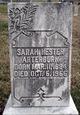 Profile photo:  Sarah <I>Hester</I> Arterburn