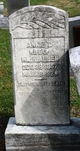 Annie T Allen