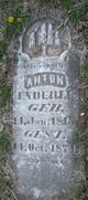 Anton Enderle