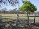 Burton Springs Cemetery