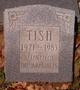 Profile photo:  Tish Arrigale