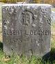 Profile photo:  Albert Leach Decker