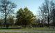 Ankney-Blaine Cemetery