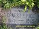 Ernest F Rice