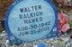 Walter Raleigh Hawks