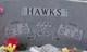Annie Marie <I>Hawks</I> Hawks