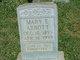 Profile photo:  Mary Elizabeth <I>Babb</I> Abbott