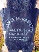 James Madison Garrett, Sr