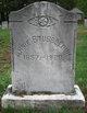 Annie Stubblebine
