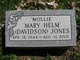 Mary Mollie <I>Davidson</I> Jones