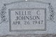 Nellie C Johnson