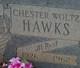 Chester Woltz Hawks